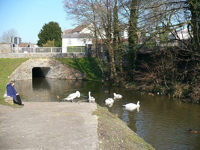 Canal and Bettws Lane bridge