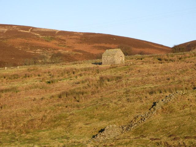 Pastures near Tedham Green