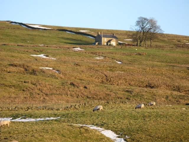 Pastures below High Spartylea