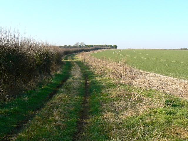 Farmland north of Itchen Stoke, Hampshire