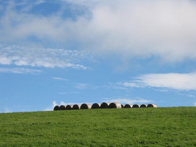 Near Cwm-Sanaham Hill at harvest time