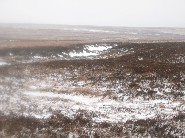 The head of a snowy cleugh on Wolfcleugh Common