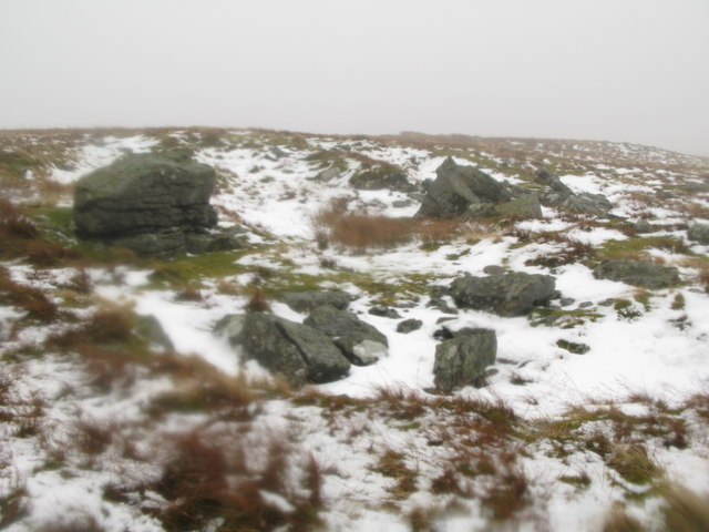Rock outcrop on Sedling Fell