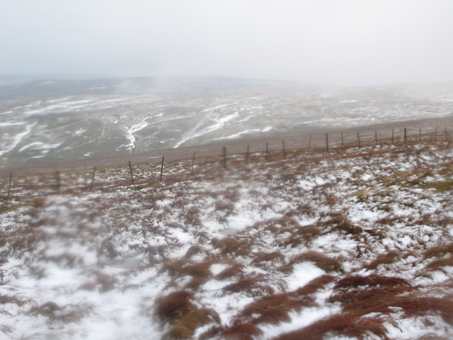 Sedling Fell above Coptcleugh