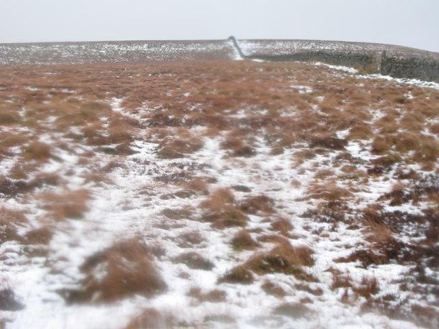Moorland below Black Hill (2)