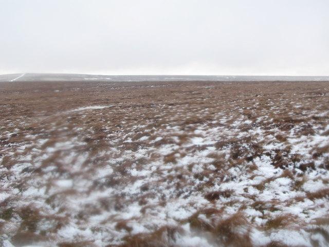 Flattish ground north of Black Hill