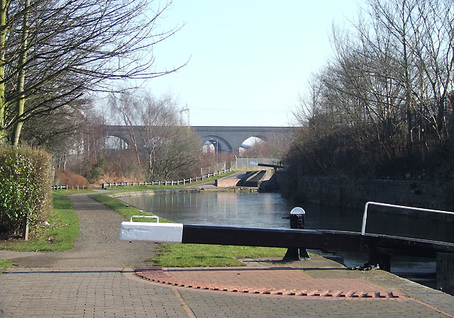 Canal by Wolverhampton Lock No 15