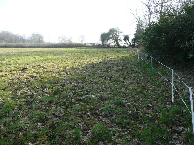 Paddock adjacent to Kidd's Hill