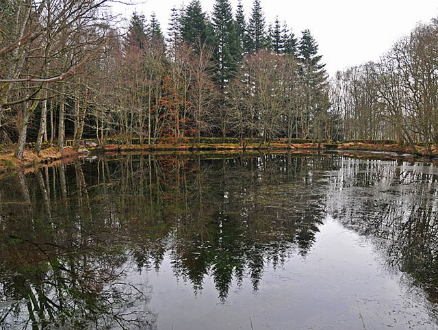 Artificial pond on the Conalter Burn