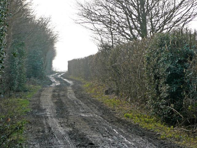 Muddy Wealden track