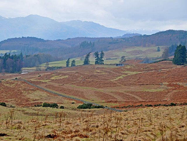 Moorland and rough pasture looking towards Lawers