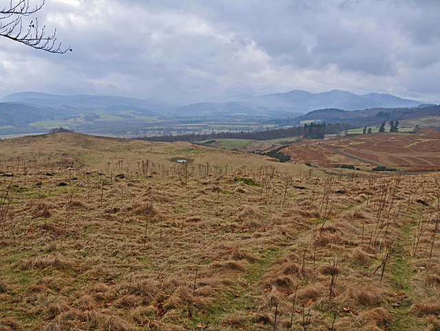 Rough pasture on the north side of Strathearn