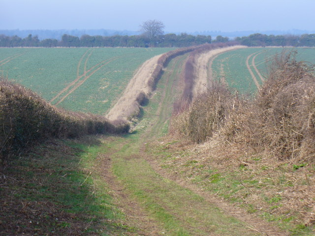 Byway North of Overton Mill