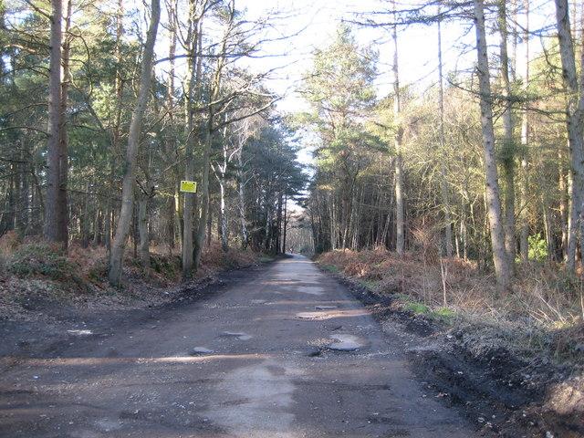 Ash to Brookwood Heaths SSSI