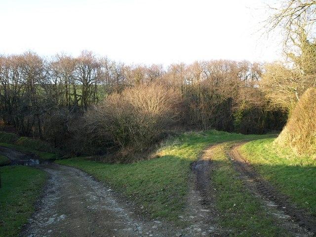Tracks diverging near East Bridge Farm