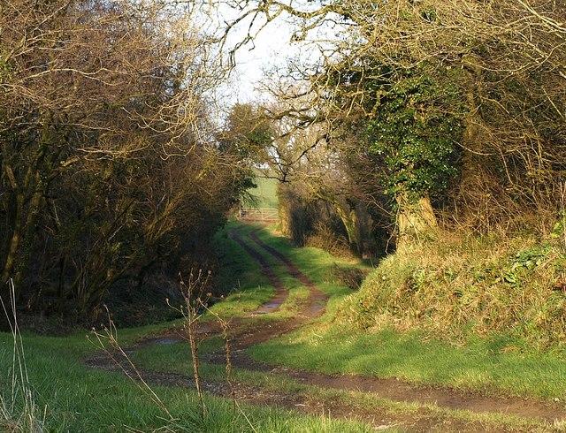 Track near East Bridge Farm