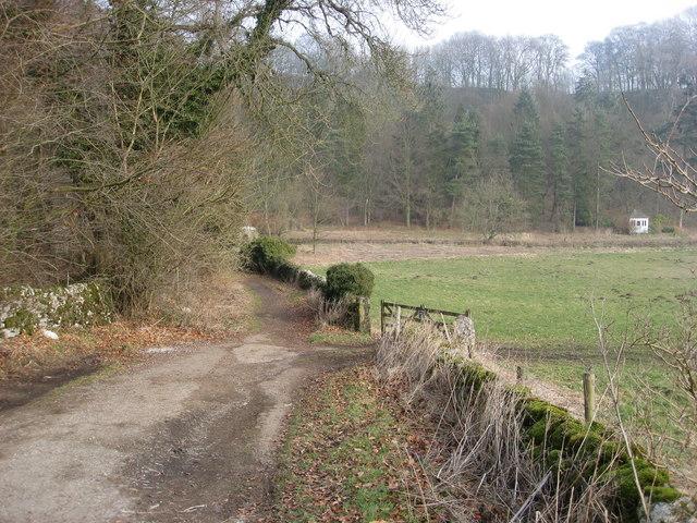 Coalpit Lane View