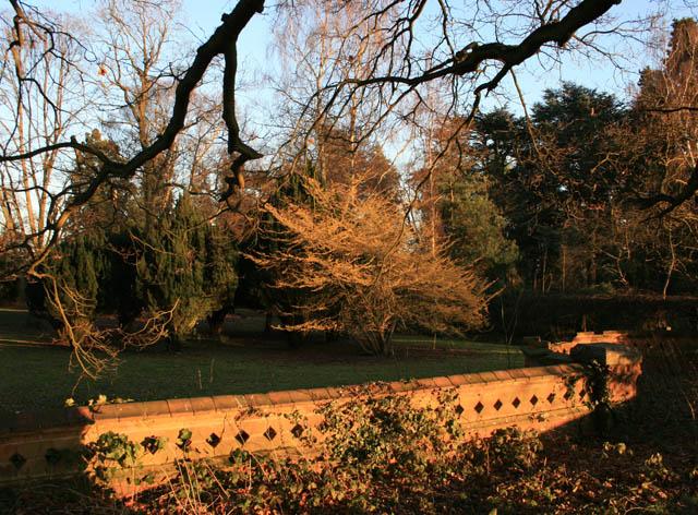 Winter Sun on Wootton Court Gardens