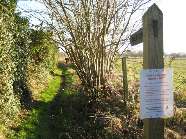 Willey Green: Footpath to Bailes Lane with FMD notice