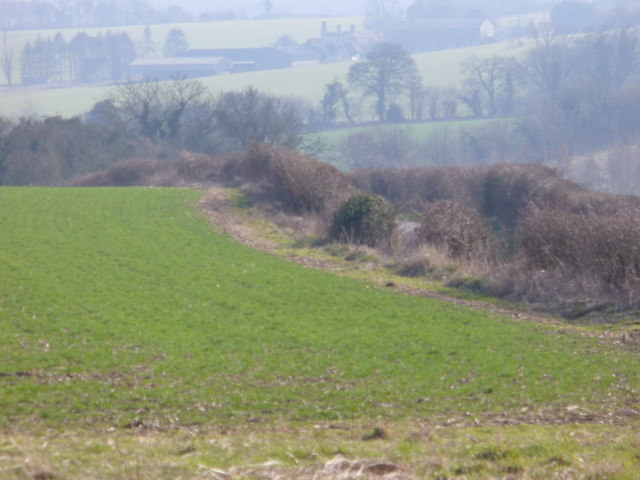 Downland South of Hannington