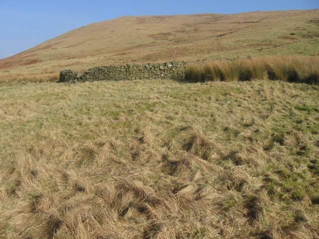 Sheepfold below Fingland Rig