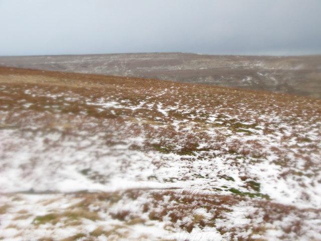 Middlehope Moor (2)