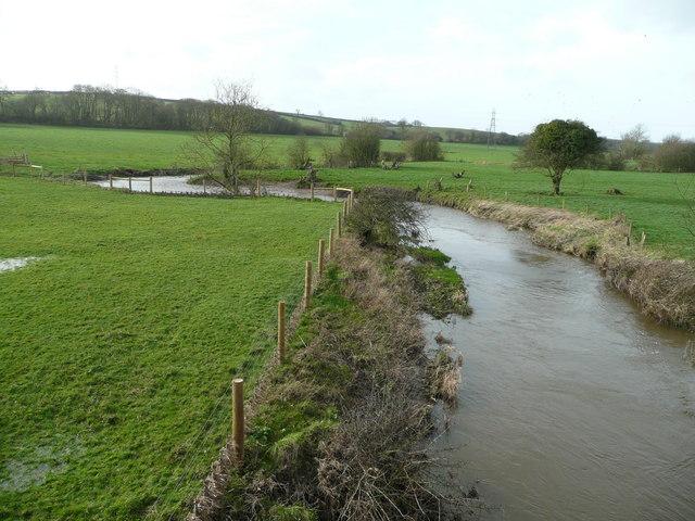 River Tamar from Crowford Bridge