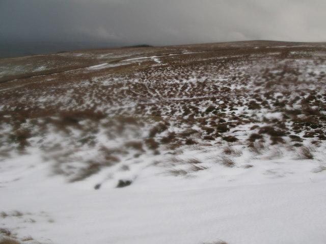 Moorland above Yearncleugh Head