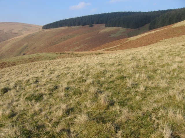 Hillside above Glensalloch Burn