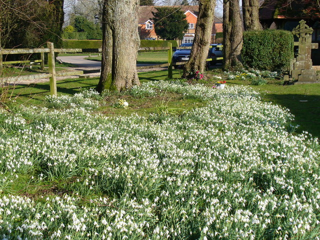 Hannington Churchyard