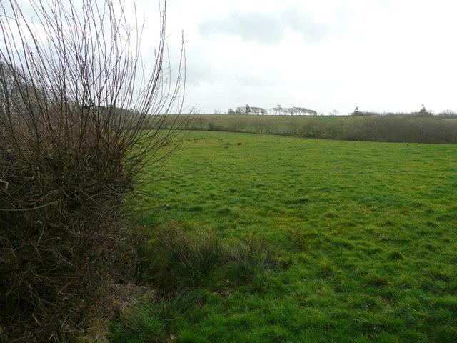 Looking towards Westcott