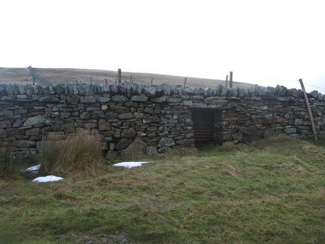 (Blocked up) sheep hole above Middlehope Burn