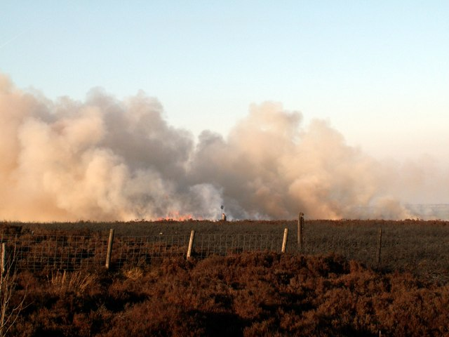 Controlled heather burning on Bord Hill Moorland