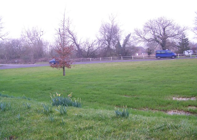 Donkey Field, Coombe Bissett