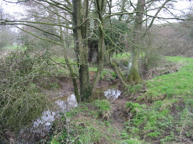 Conygre Brook, near Priston Mill