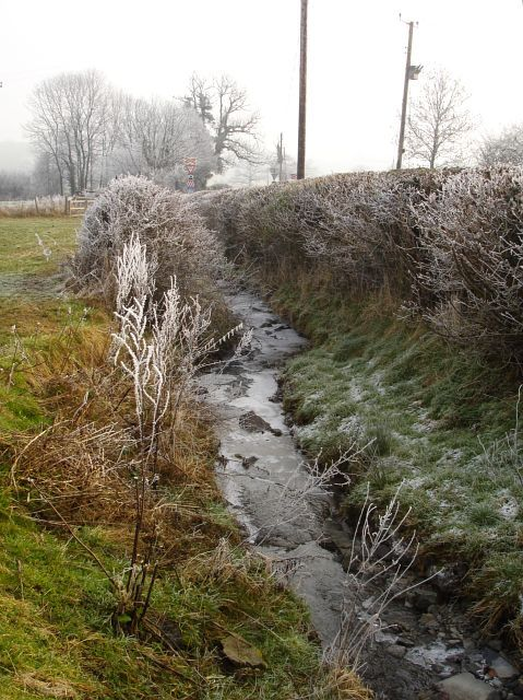 Ice on the brook