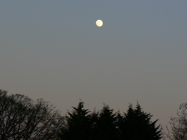 Moon over Sparsholt, Hampshire