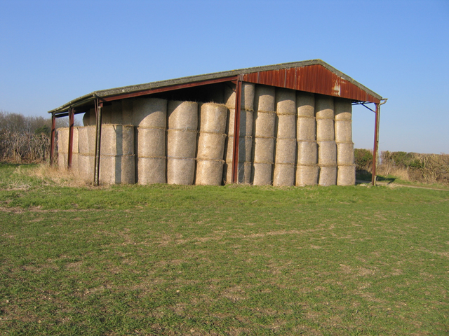 210 round straw bales in an open-sided barn