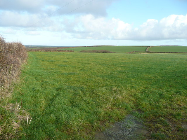 Pastures of North Cornwall