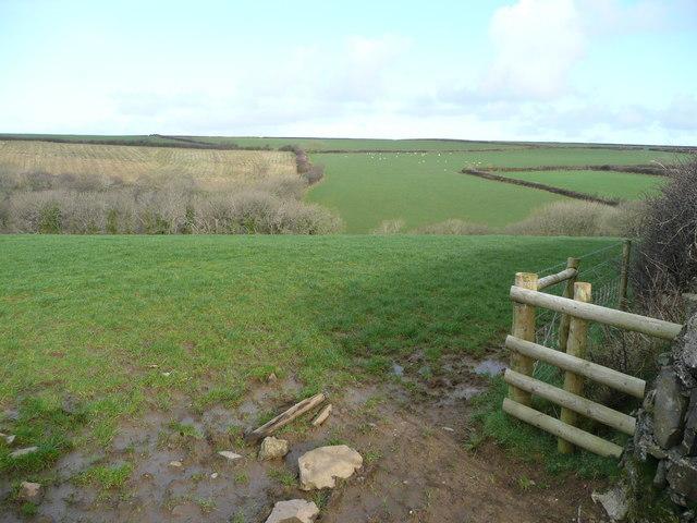 Pastoral view near Eastcott