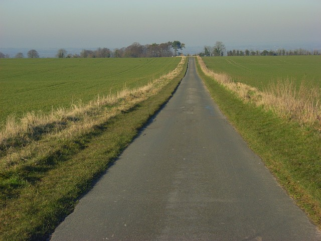 Road descending from the downs, Sparsholt