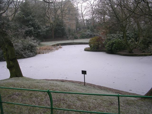 Frozen Lake - People's Park