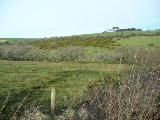 North of Putsole Farm