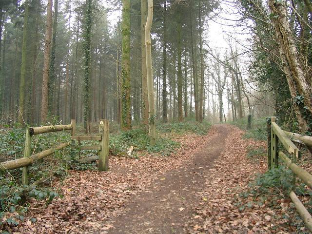 Gateway to public footpath out of Dunbridge