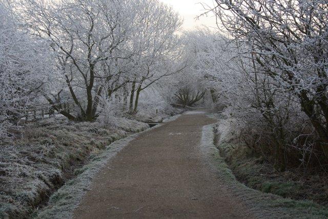 Guisborough Branch Walkway