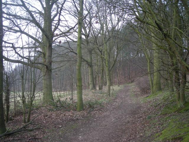Footpath to Higford