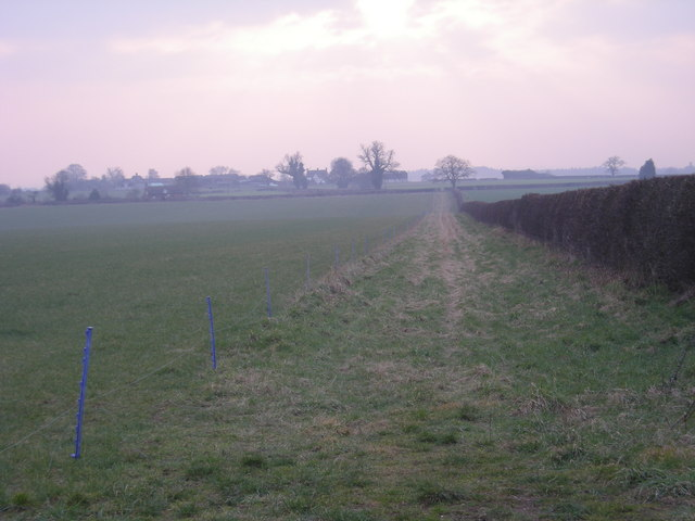 Across the fields to Catstree