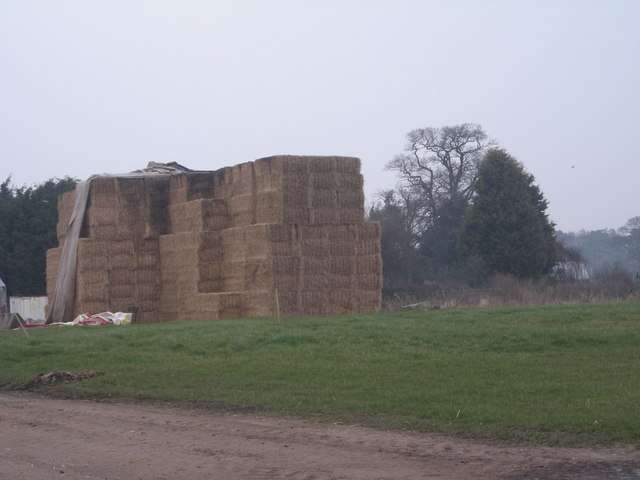 Haystack at Cranmere