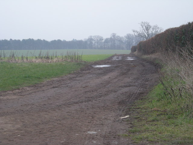 Farmland at Cranmere