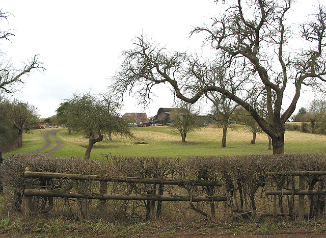 Orchard and farm buildings, Tirley